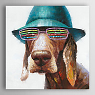 Hand Painted Oil Painting Animal A Dog With A Strange Glasses with Stretched Frame 7 Wall Arts®