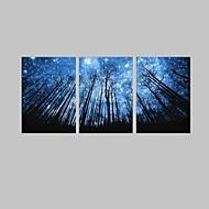 E-Home® gestreckt geführt Leinwanddruck Kunst Wald und Himmel Flash-Effekt führte von 3 eingestellt