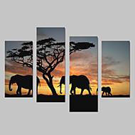 Животное Холст для печати 4 панели Готовы повесить,Вертикальная