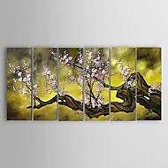 Hand-painted Plum Flower Oil Painting Stretched Frame Ready To Hang - Set of 6