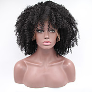 Sylvia Synthetic Lace front Wig Black Hair Heat Resistant Kinky Curly Synthetic Wigs