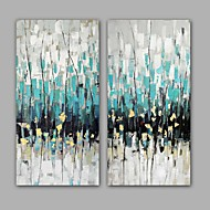 100% Hand-Painted Abstract Hang-Painted Oil PaintingModern / Classic Two Panels Canvas Oil Painting For Home Decoration