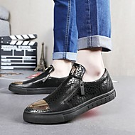 Men's Loafers & Slip-Ons Fall Winter Comfort Cowhide Casual Flat Heel Zipper Black Silver Others