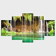 Gerdirilmiş Tuval Resmi Manzara Çiçek/Botanik Modern Klasik,Beş Panelli Kanvas Herhangi Şekli baskı Sanatı Duvar Dekor For Ev dekorasyonu