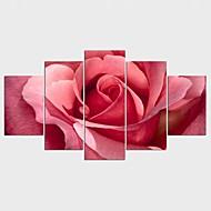 Aufgespannte Leinwandrucke Blumenmuster/Botanisch Stil Modern,Fünf Panele Leinwand Jede Form Druck-Kunst Wand Dekoration For Haus