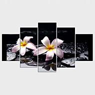 Reprodukce maleb na plátně Květinový/Botanický motiv Styl Moderní,Pět panelů Plátno Jakýkoliv Shape Tisk Art Wall Decor For Home dekorace