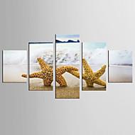 Inpresione Giclee Paisaje Mediterráneo Estilo,Cinco Paneles Lienzos Cualquier Forma lámina Decoración de pared For Decoración hogareña