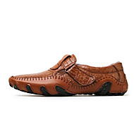 Men's Boat Shoes Comfort Cowhide Nappa Leather Spring Casual Screen Color Light Brown Black Flat