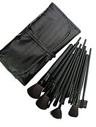 Professional Makeup Brush With Free Case 18PCS (Black)
