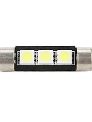 39mm 5050 SMD LED 5500K ampoule blanche pour la voiture