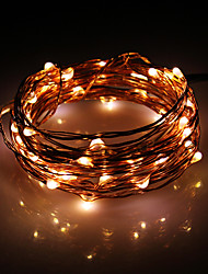 5M 50-LED Warm White Copper Wire String Fairy Light mit AC-Adapter-Set (100-240V)