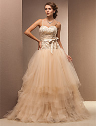 Lan Ting Fit & Flare Plus Sizes Wedding Dress - Champagne Floor-length Spaghetti Straps Lace/Tulle