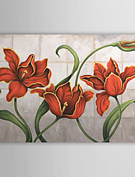 Hand Painted Oil Painting Floral 1305-FL0126