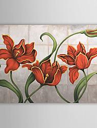 Hand geschilderd olieverfschilderij Bloemen 1305-FL0126