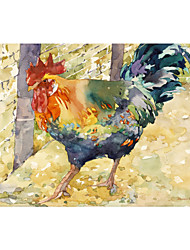 Stretched Canvas Art Animal Colorful Rooster by Annelein Beukenkamp Ready to Hang