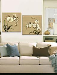 Stretched Canvas Art Botanical Fresh Flower Set of 2
