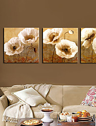 Stretched Canvas Art Floral Popies Set of 3
