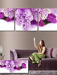 Stretched Canvas Art Floral Purple Petals Set of 3