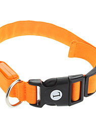 Cat Dog Collar LED Lights Adjustable/Retractable Solid Orange Nylon