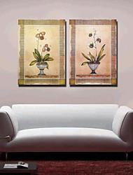 Stretched Canvas Art Floral Vintage Set of 2