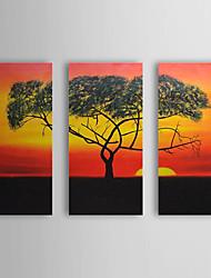 Handgemaltes Ölgemälde Landschaft Einsamer Baum mit gestrecktem Frame Set von 3 1308-LS0742