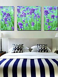 Stretched Canvas Art Floral Purple Garden Set of 3