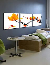 Direction botanique d'art de toile étirée de fleur jaune Lot de 3