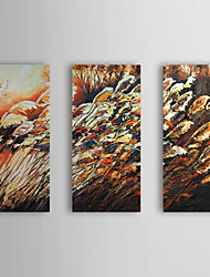 Hand Painted Oil Painting Floral Reed with Stretched Frame Set of 3 1310-FL1174