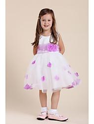 Malha vestido de princesa da menina