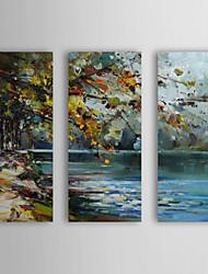 Dipinti a mano olio pittura di paesaggio con telaio allungato Pond Set di 3 1310-FL1141