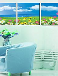 Trasferimenti su tela Art Landscape fiori sul campo Set di 3