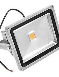 30W 3000K Warm White Light Led Flood Light AC110/220V
