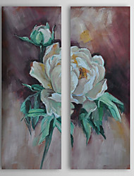 Hand Painted Oil Painting Floral White Rose with Stretched Frame Set of 2 1311-FL1121
