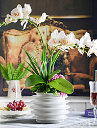 "22"" Elegant Colorful Butterfly Orchids With White Ceramic Vase"