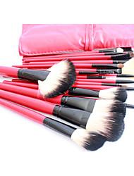 Pro de alta qualidade 22 PCs Natural pêlo de cabra escova da composição Set com Red Pouch