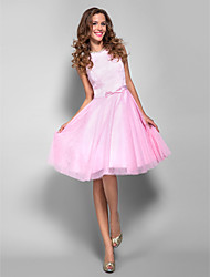 Homecoming Holiday/Homecoming/Cocktail Party/Prom Dress - Candy Pink Plus Sizes A-line Bateau Knee-length Lace/Tulle