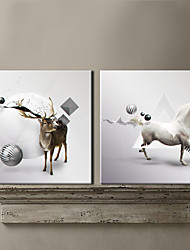 Stretched Canvas Print Art Animal Deer and Horse Set of 2