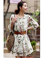 Smule Slim Ciffon Korean Style Lovely Dress