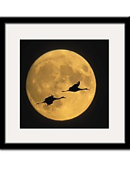 You And Me in The Moonlight Landscape Framed Canvas Print