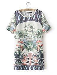Espagne Cadre Tropical Vivi Roger femmes Impression Robe droite (écran couleur)