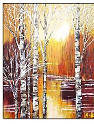 Ручная роспись пейзаж Картина с растянутыми кадров готовы повесить