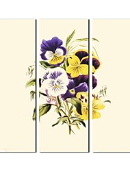 Hand Painted Oil Painting Floral Modern Decorative Flower with Stretched Frame Set of 3