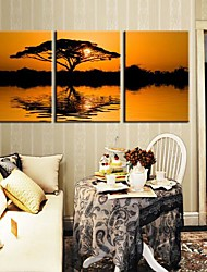 Stretched Canvas Art Landscape The Setting Sun Is Accompanied By The Tree Set of 3