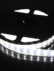 doppia fila 600x5050 SMD 144W 6000lm IP67 impermeabile luce bianca luce di striscia principale (5 metri 12v / dc)