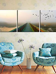 Stretched Canvas Art Landscape Into The Nature Set of 3