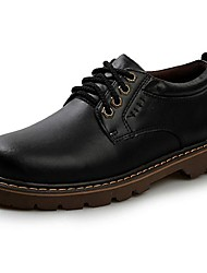 Men's Spring Summer Fall Leather Outdoor Low Heel Lace-up Black
