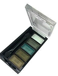 5 Colors Makeup Eye Shadow Palette (J034-04)