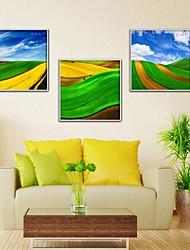 Blue Sky und Grass Dekorative Kunst Gerahmte Leinwanddruck 3-er Set