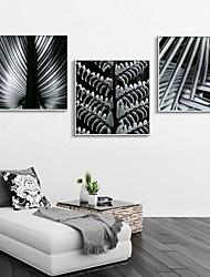 Floral/Botanical Framed Canvas / Framed Set Wall Art,PVC White No Mat With Frame Wall Art