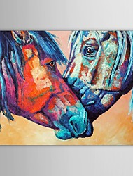 Hand Painted Oil Painting Animals Kiss Horse with Stretched Frame